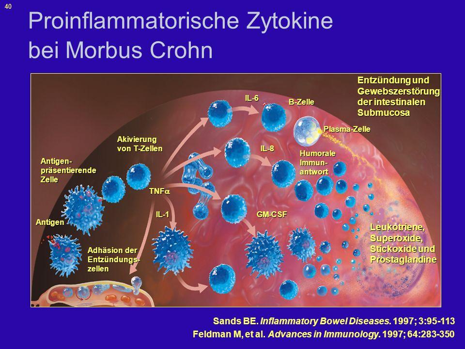 Proinflammatorische Zytokine bei Morbus Crohn