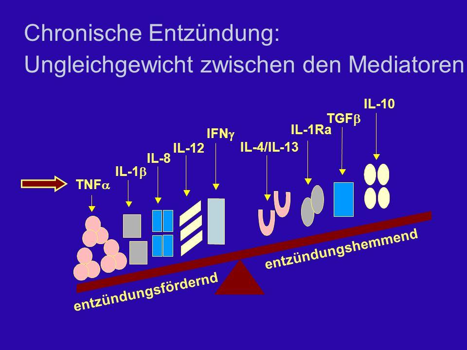 Chronische Entzündung: Ungleichgewicht zwischen den Mediatoren