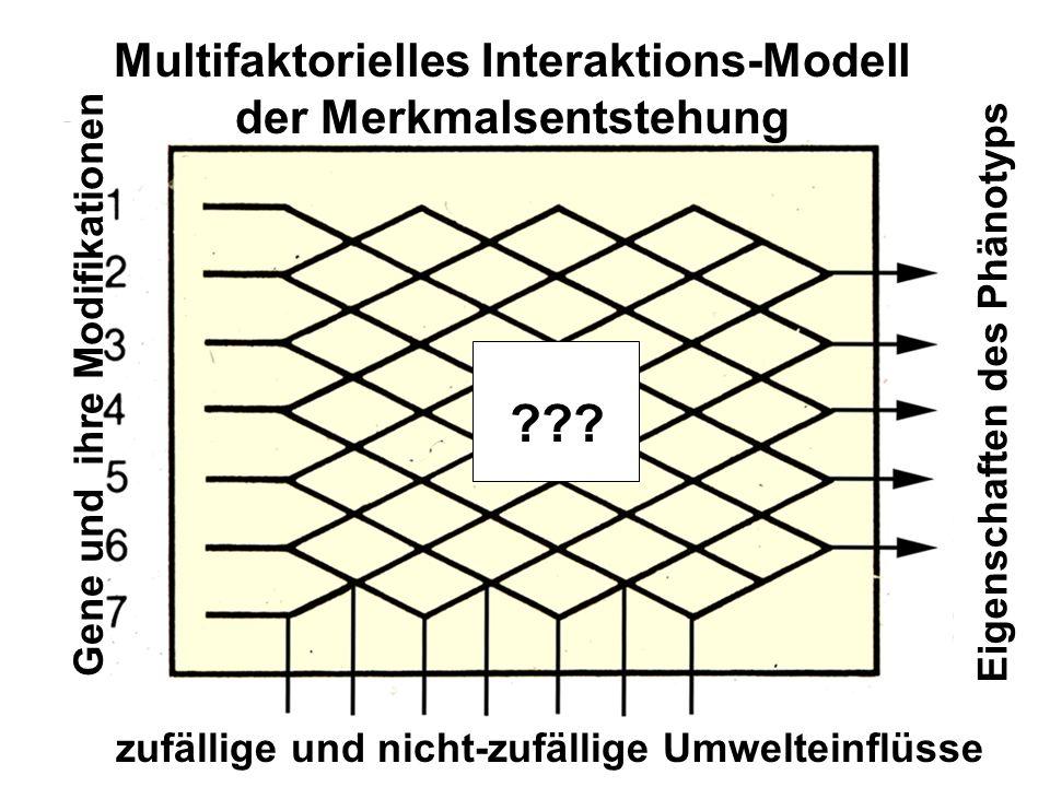 Multifaktorielles Interaktions-Modell der Merkmalsentstehung