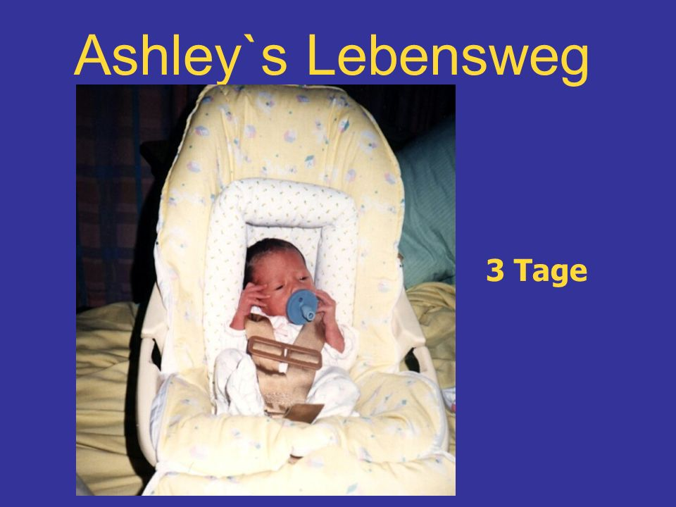 Ashley`s Lebensweg 3 Tage