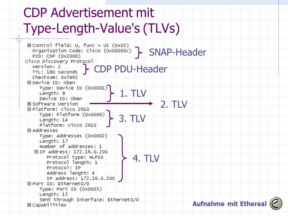 CDP Advertisement mit Type-Length-Value s (TLVs)