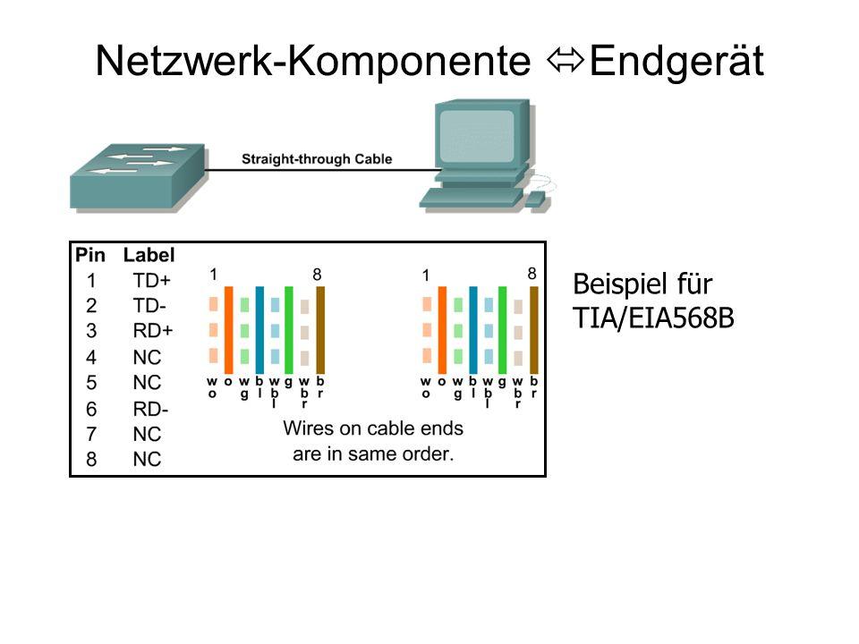 Netzwerk-Komponente Endgerät