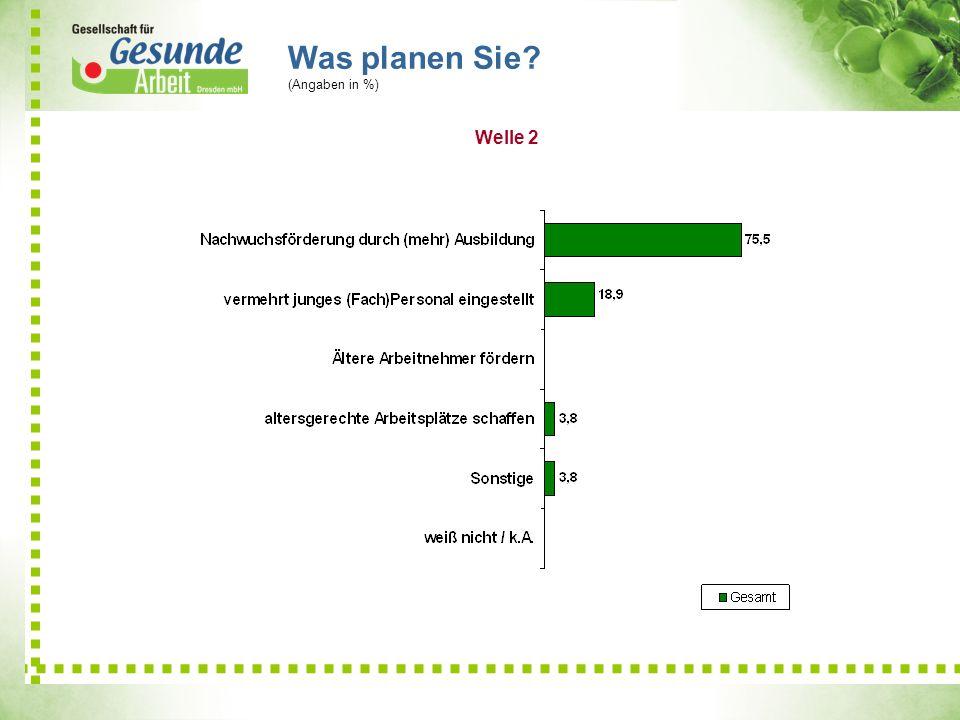 Was planen Sie (Angaben in %) Welle 2 6,9 21,19