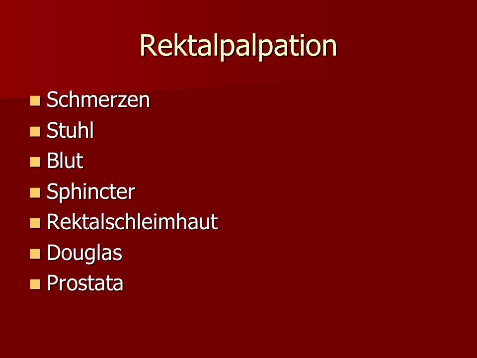 Rektalpalpation Schmerzen Stuhl Blut Sphincter Rektalschleimhaut