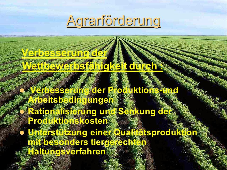 Agrarförderung Wettbewerbsfähigkeit durch :
