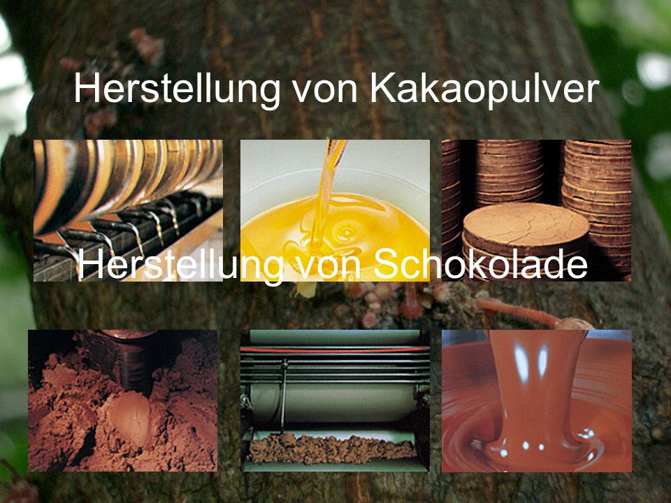 Herstellung von Kakaopulver