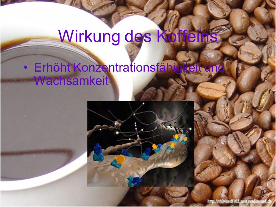 Wirkung des Koffeins Erhöht Konzentrationsfähigkeit und Wachsamkeit