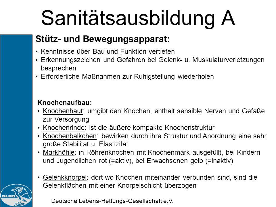 Sanitätsausbildung A Stütz- und Bewegungsapparat: