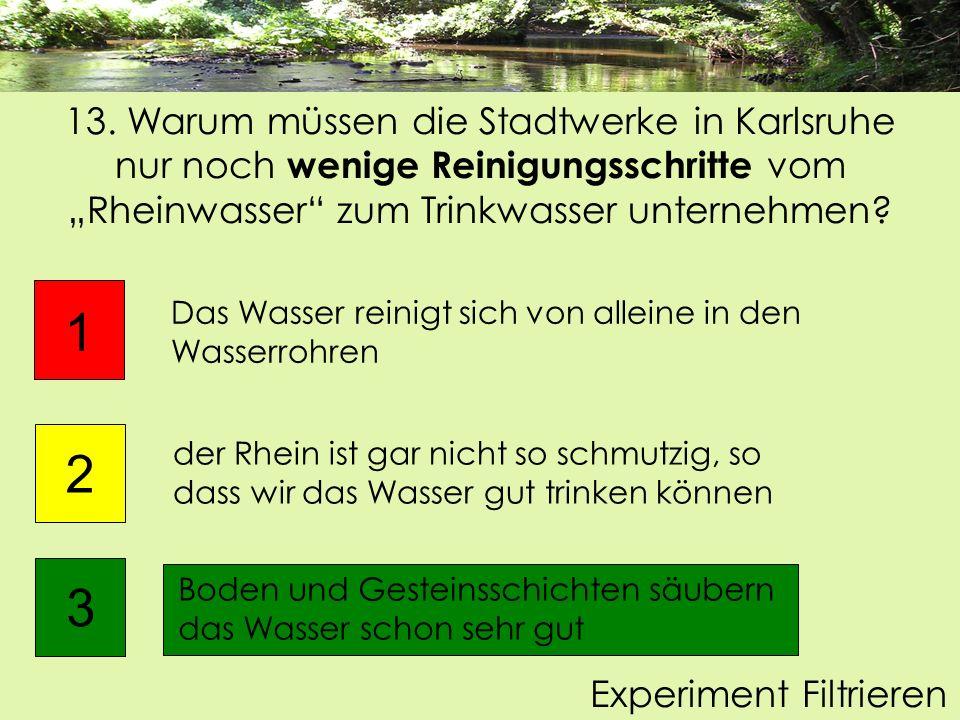 """13. Warum müssen die Stadtwerke in Karlsruhe nur noch wenige Reinigungsschritte vom """"Rheinwasser zum Trinkwasser unternehmen"""