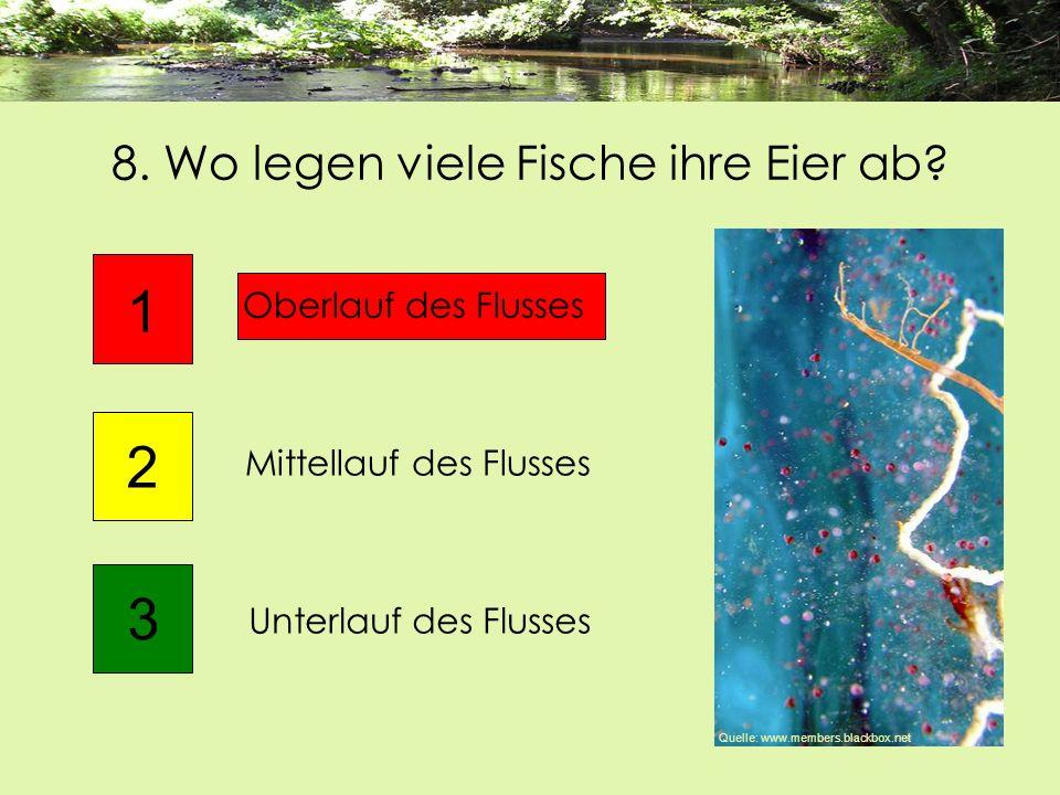 8. Wo legen viele Fische ihre Eier ab