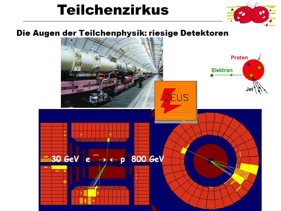 Die Augen der Teilchenphysik: riesige Detektoren