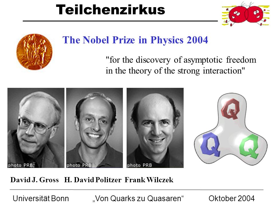 The Nobel Prize in Physics 2004