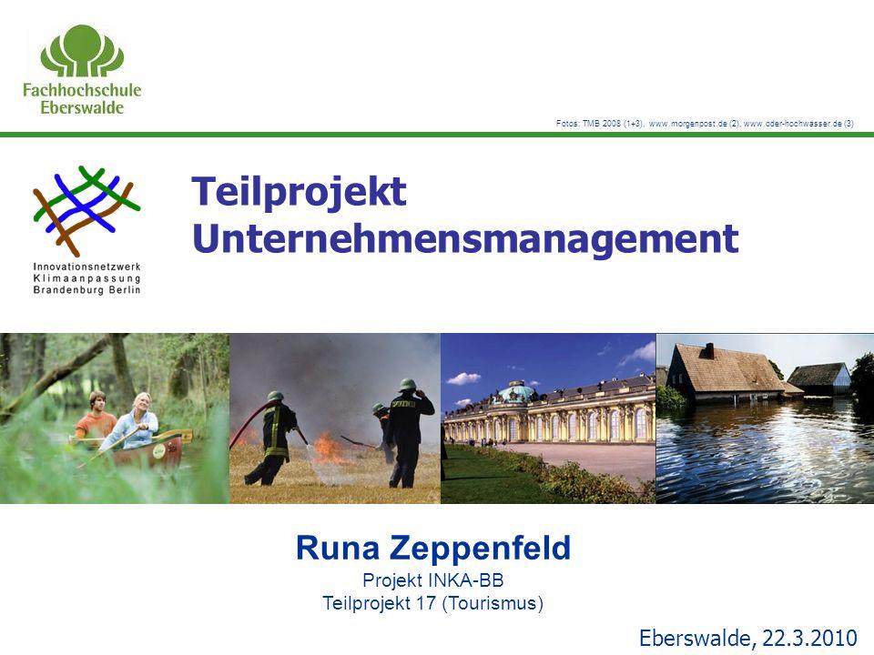 Teilprojekt Unternehmensmanagement