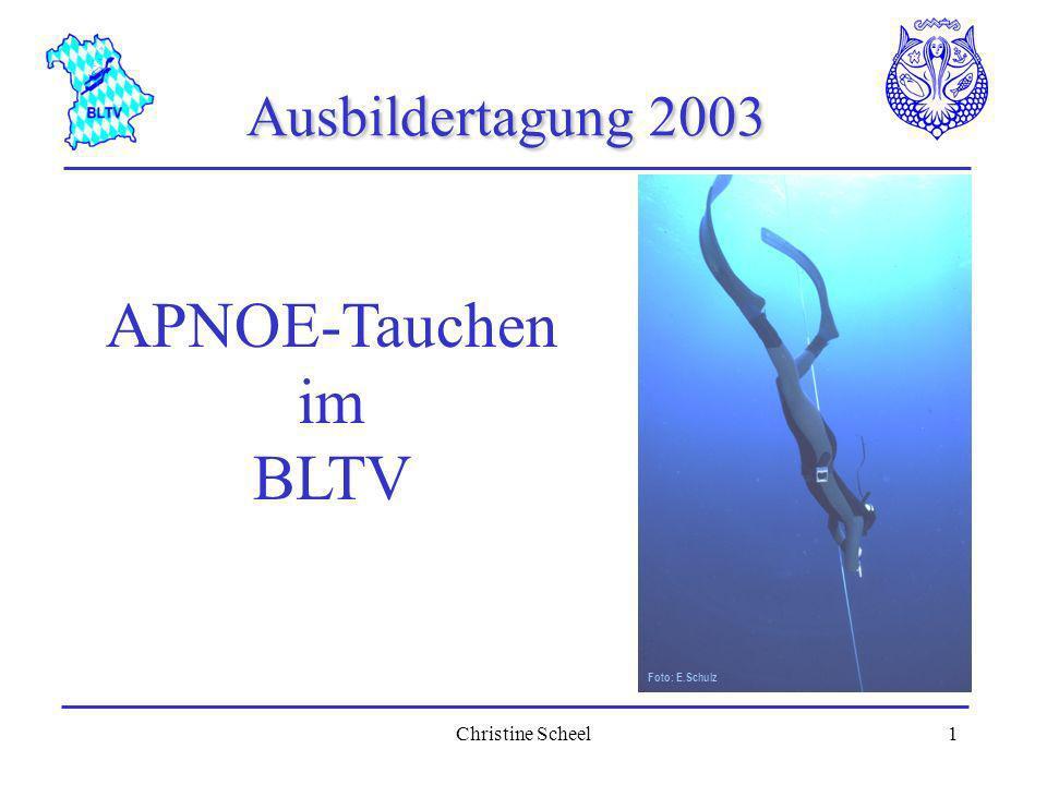 Ausbildertagung 2003 Foto: E.Schulz APNOE-Tauchen im BLTV