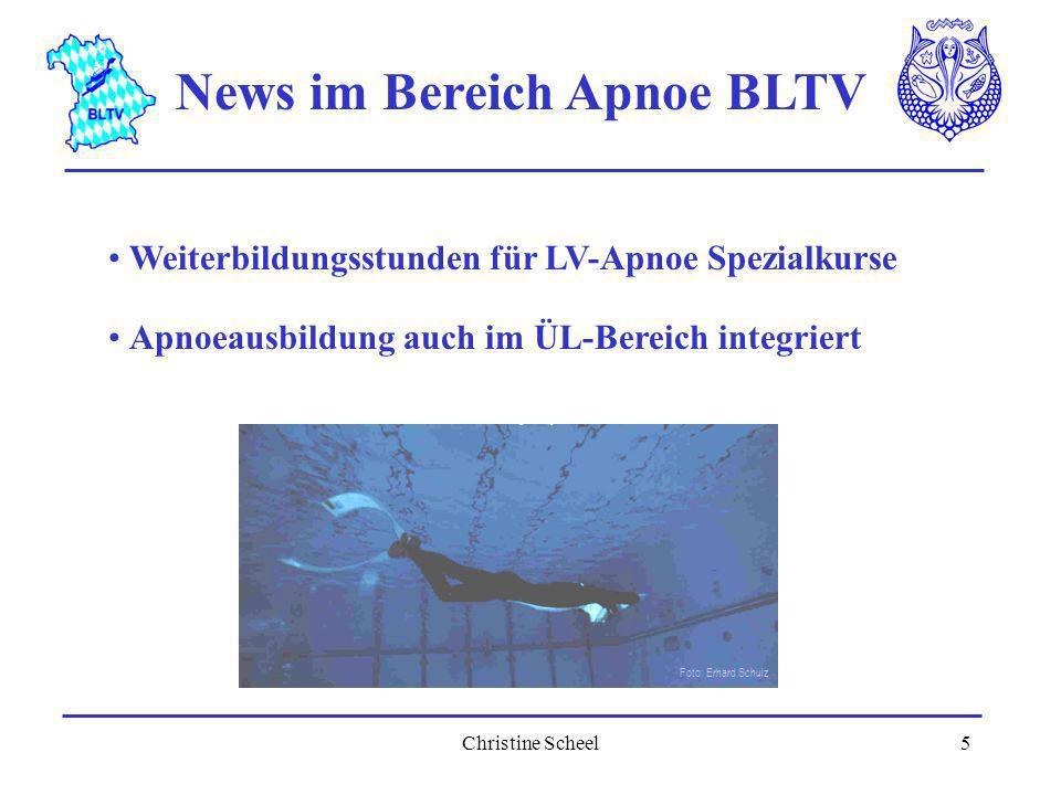 News im Bereich Apnoe BLTV