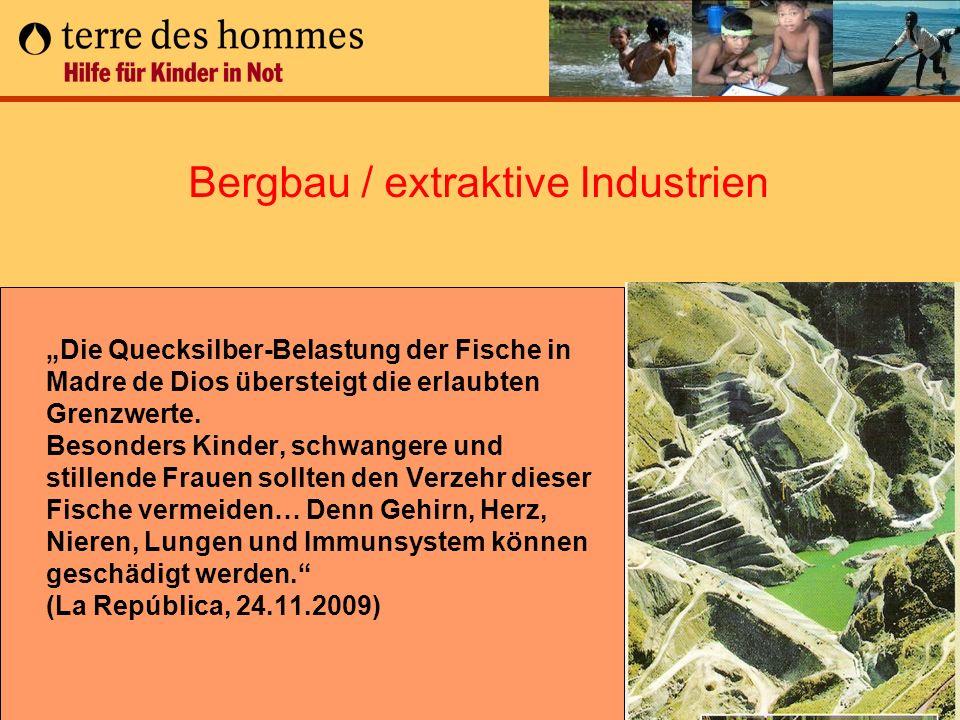 Bergbau / extraktive Industrien
