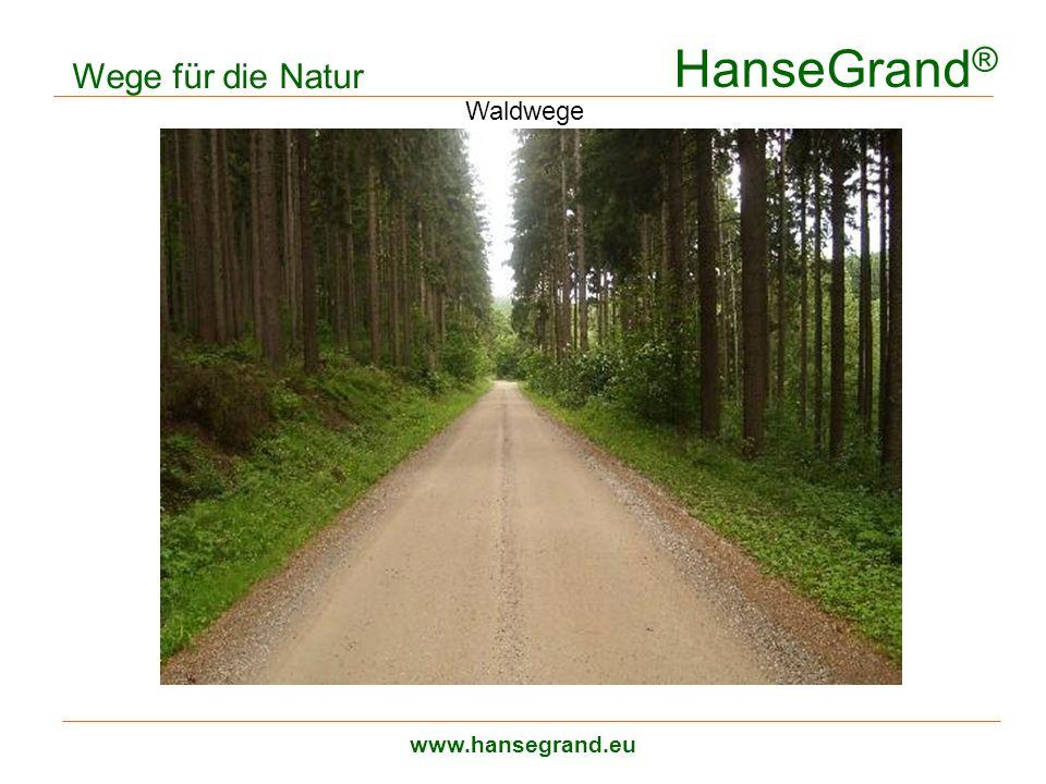 HanseGrand® Wege für die Natur Waldwege www.hansegrand.eu