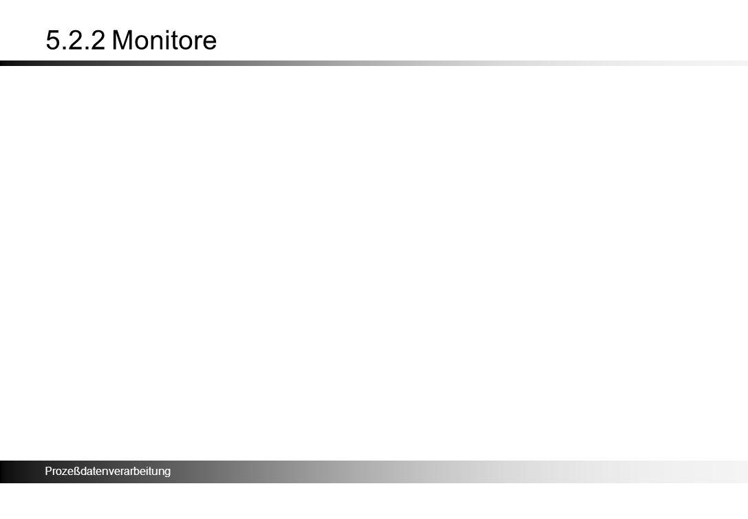 5.2.2 Monitore