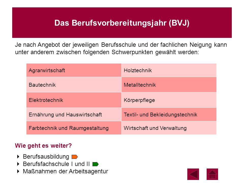 Das Berufsvorbereitungsjahr (BVJ)