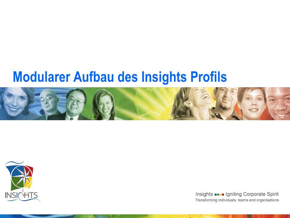 Modularer Aufbau des Insights Profils