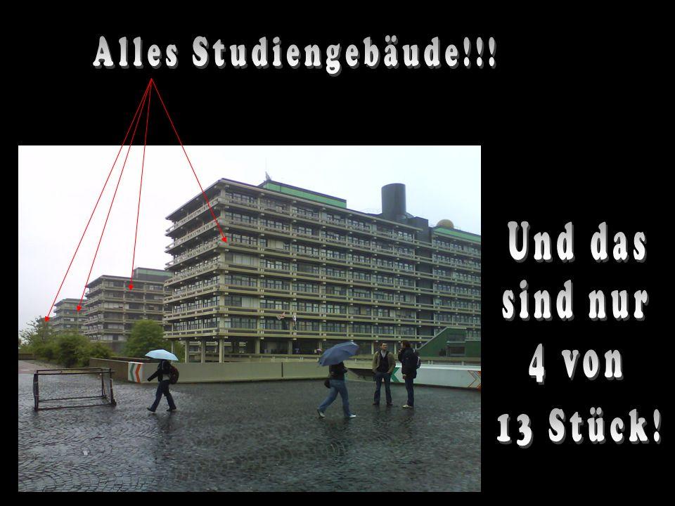 Alles Studiengebäude!!! Und das sind nur 4 von 13 Stück!
