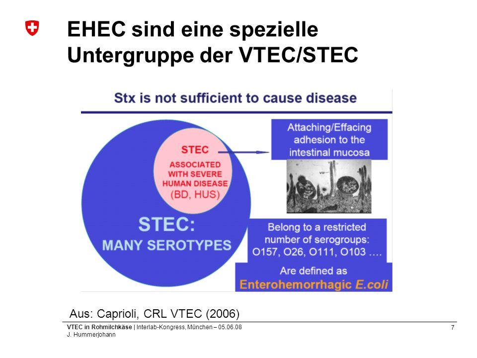EHEC sind eine spezielle Untergruppe der VTEC/STEC
