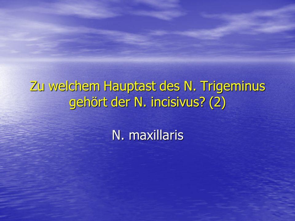 Zu welchem Hauptast des N. Trigeminus gehört der N. incisivus (2)