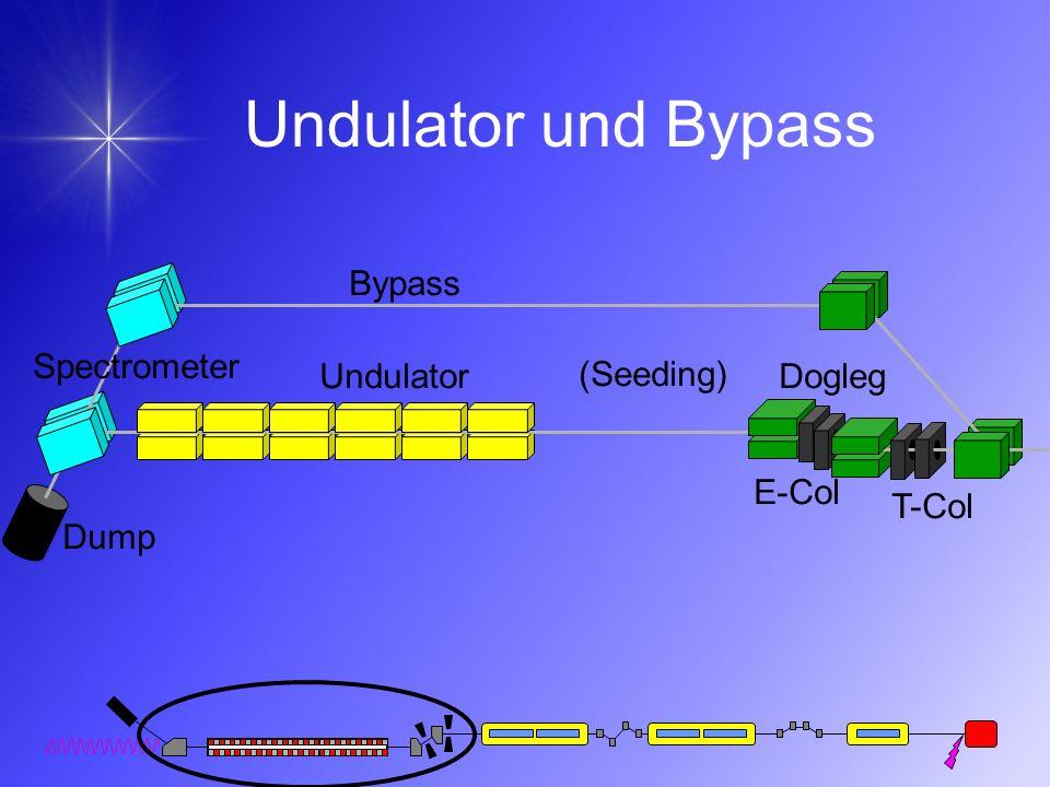 Undulator und Bypass Bypass Spectrometer Undulator (Seeding) Dogleg