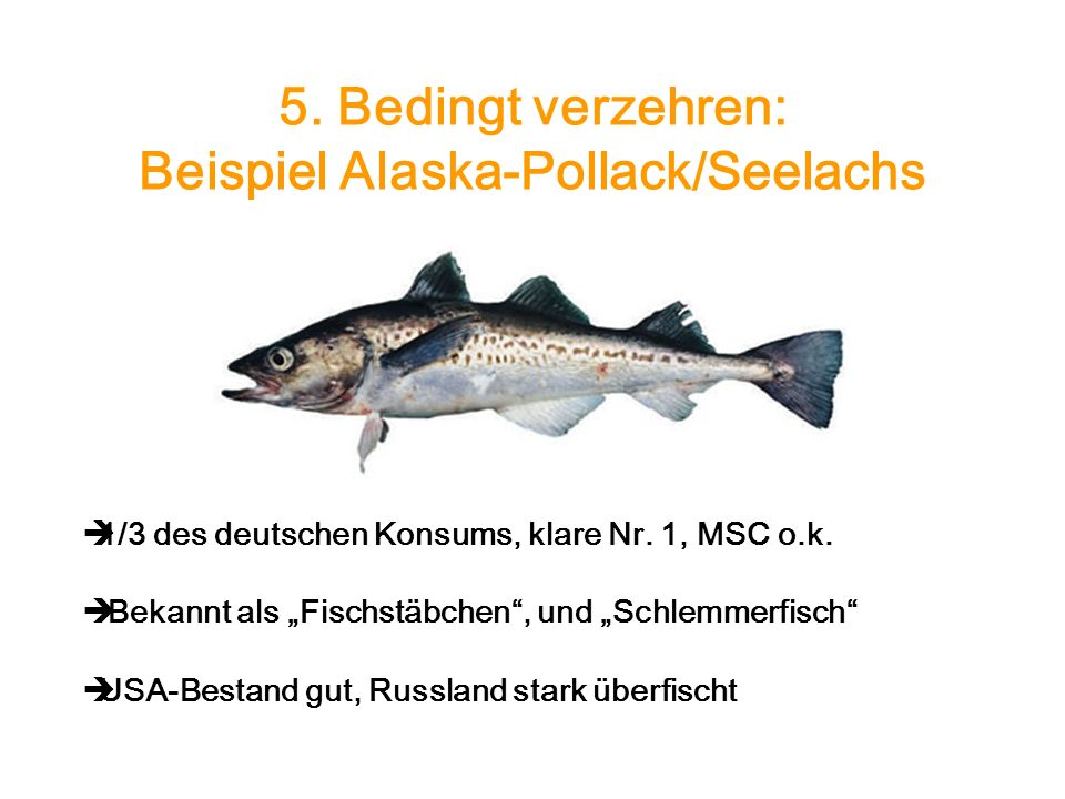 5. Bedingt verzehren: Beispiel Alaska-Pollack/Seelachs