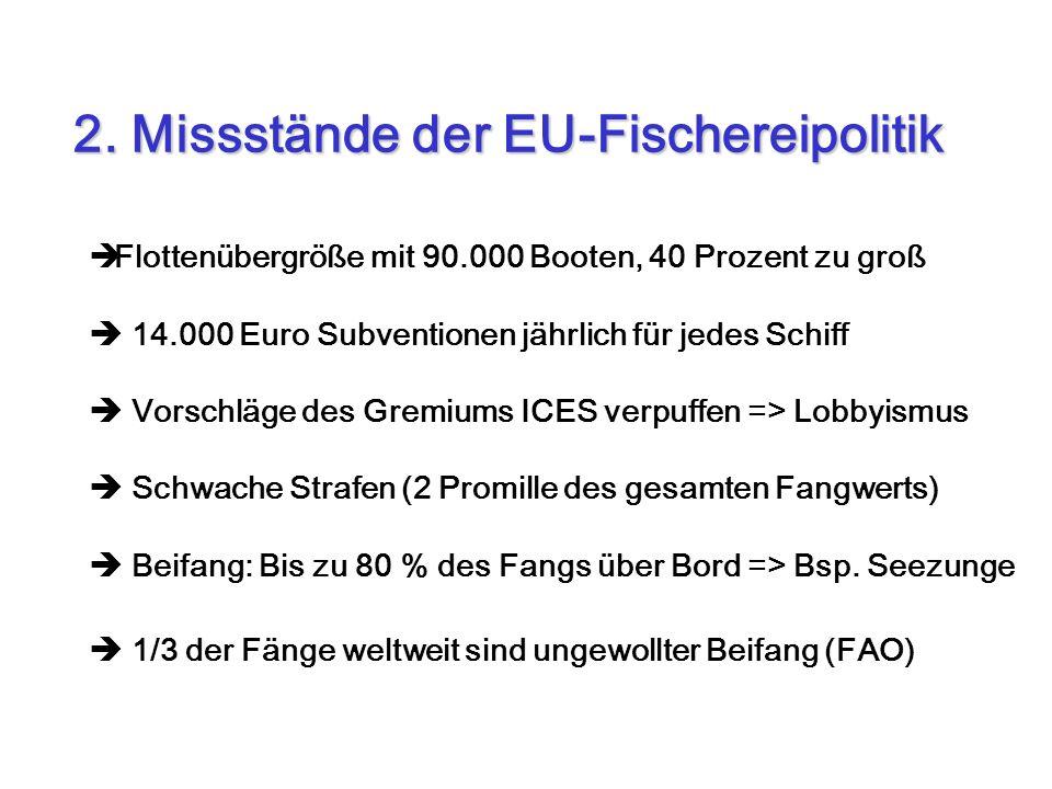 2. Missstände der EU-Fischereipolitik