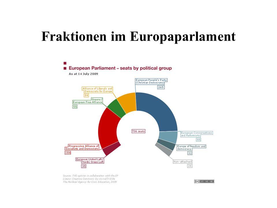 Fraktionen im Europaparlament