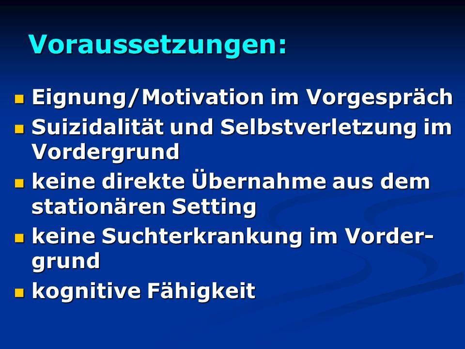 Voraussetzungen: Eignung/Motivation im Vorgespräch