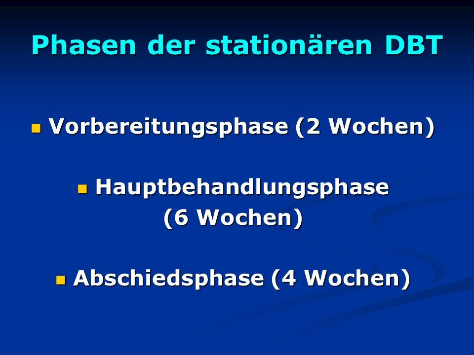 Phasen der stationären DBT