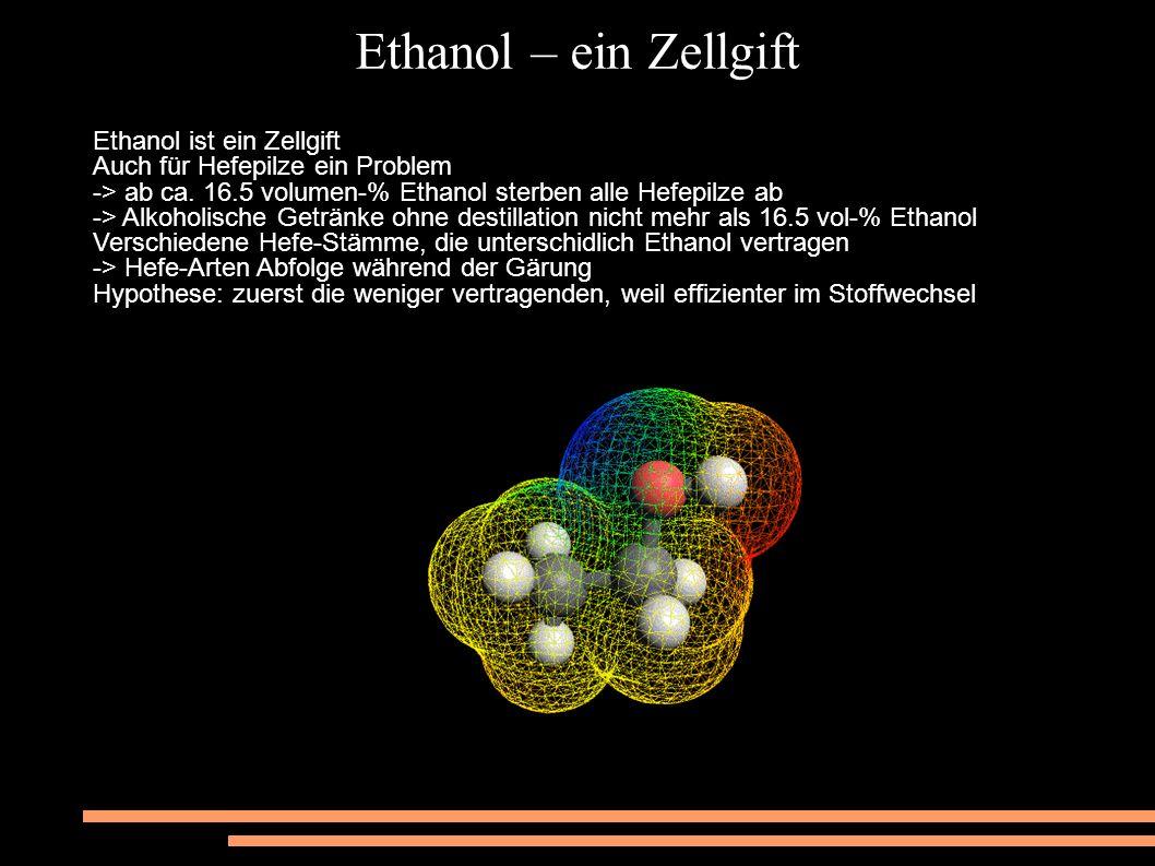Ethanol – ein Zellgift Ethanol ist ein Zellgift