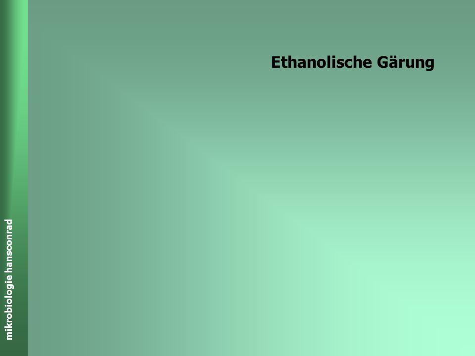 Ethanolische Gärung