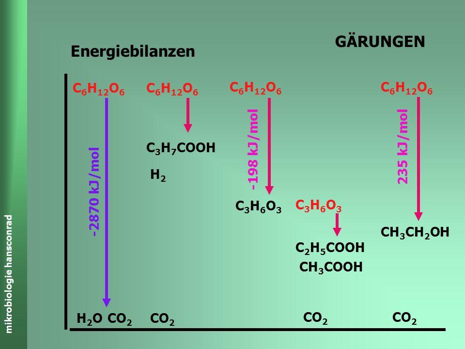 GÄRUNGEN Energiebilanzen C3H6O3 C3H7COOH H2 C6H12O6 CO2 H2O
