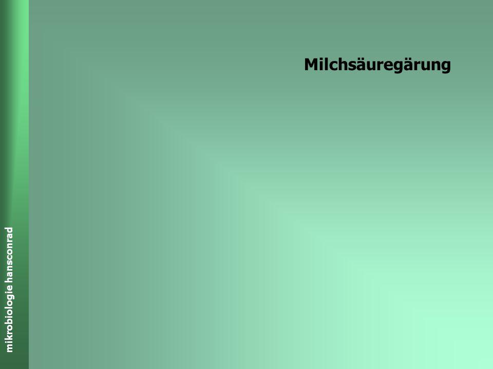 Milchsäuregärung