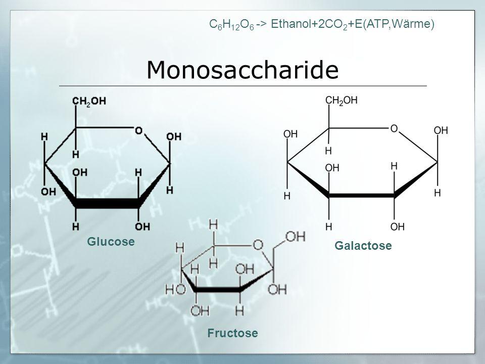 Monosaccharide Glucose Galactose Fructose