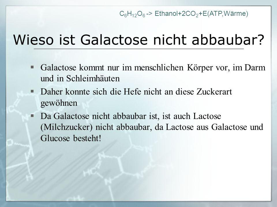 Wieso ist Galactose nicht abbaubar