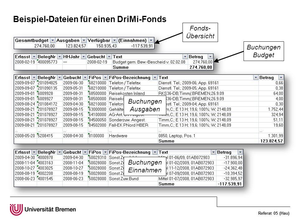 Beispiel-Dateien für einen DriMi-Fonds