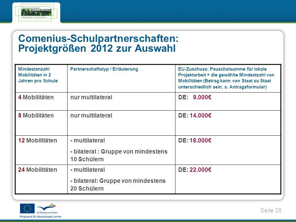 Comenius-Schulpartnerschaften: Projektgrößen 2012 zur Auswahl