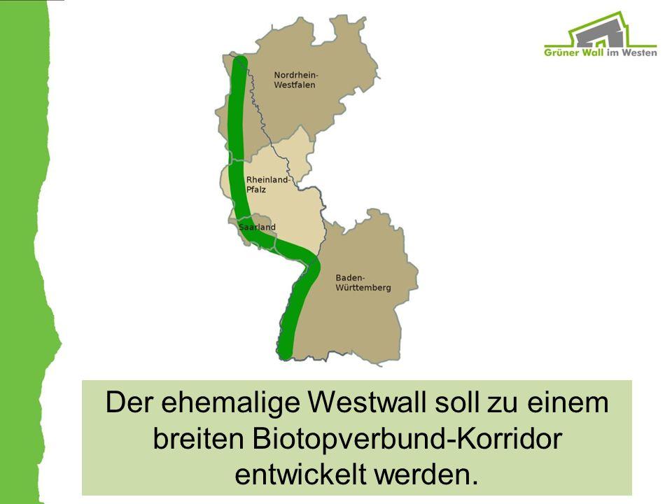 Der ehemalige Westwall soll zu einem breiten Biotopverbund-Korridor entwickelt werden.