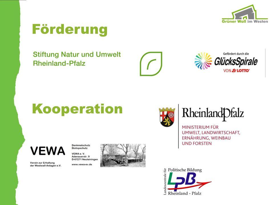 Förderung Kooperation