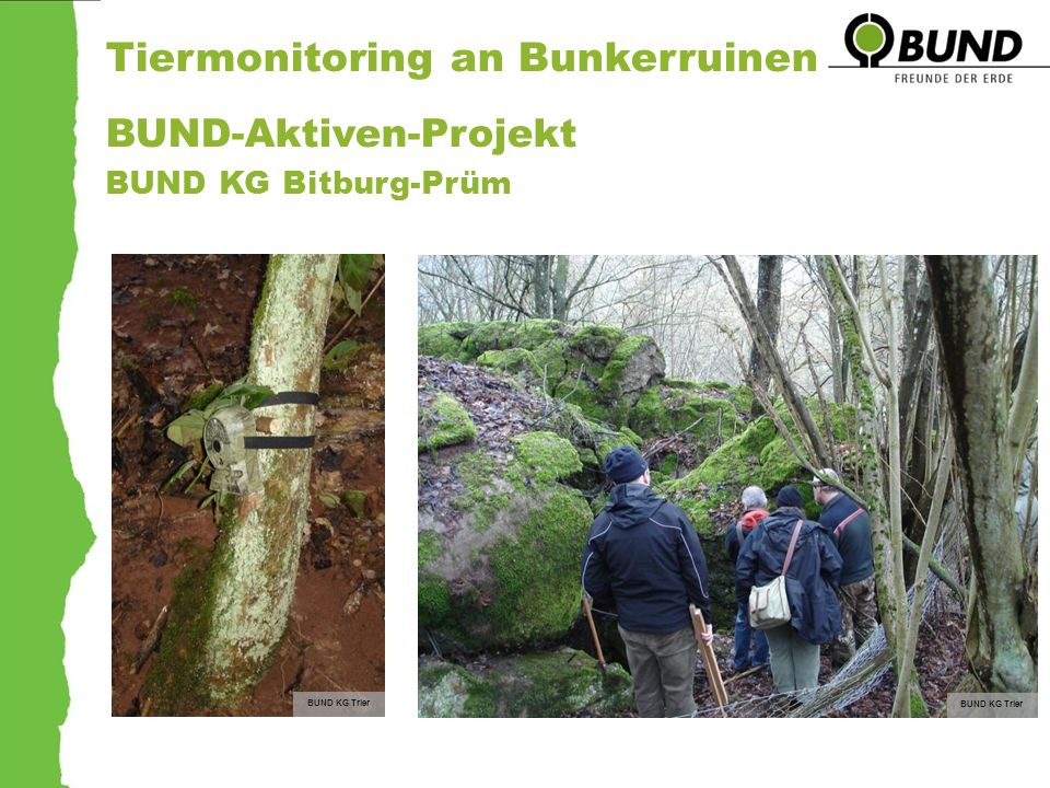 Tiermonitoring an Bunkerruinen