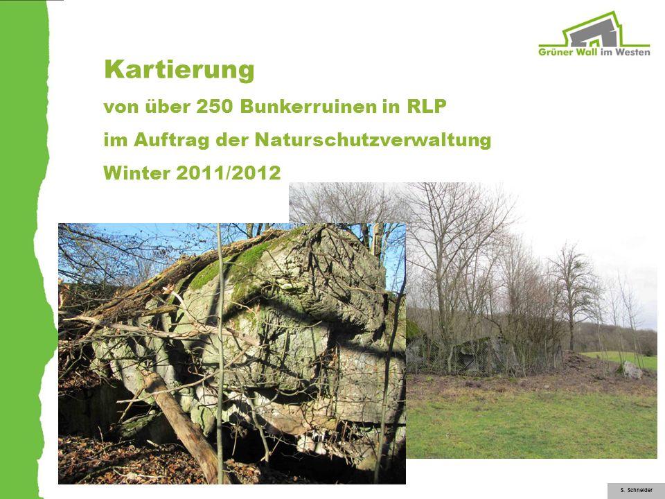 Kartierung von über 250 Bunkerruinen in RLP