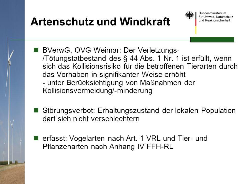 Artenschutz und Windkraft