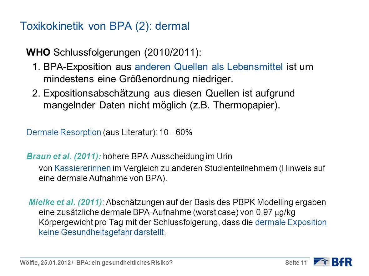 Toxikokinetik von BPA (2): dermal