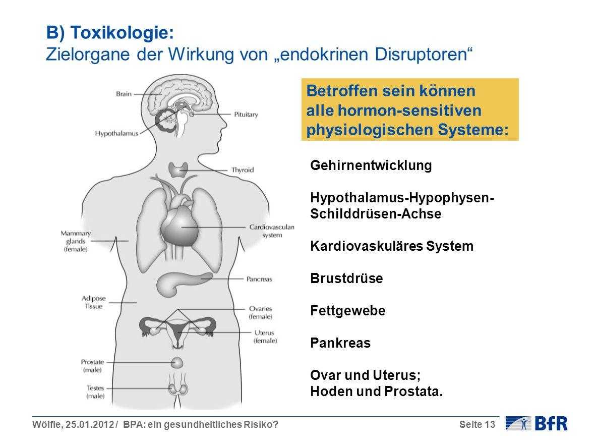 """B) Toxikologie: Zielorgane der Wirkung von """"endokrinen Disruptoren"""