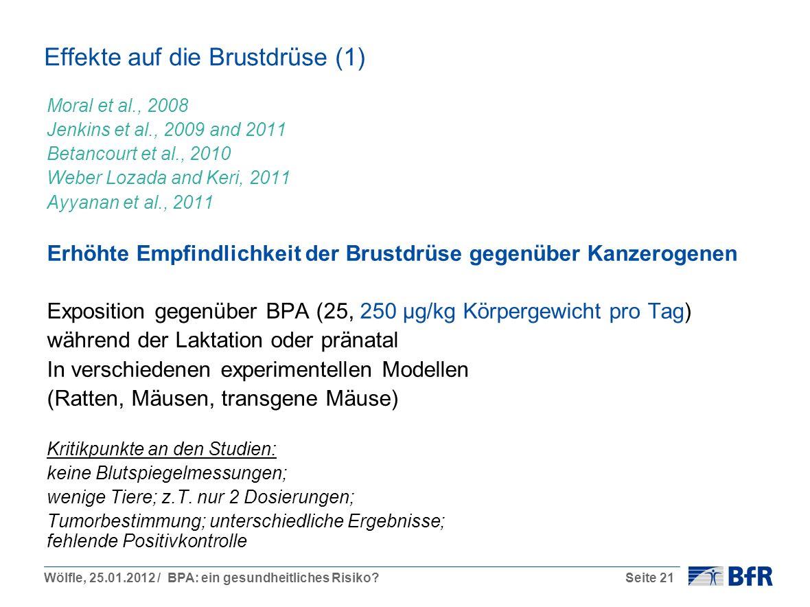 Schön Maus Brustdrüse Anatomie Bilder - Anatomie Ideen - finotti.info