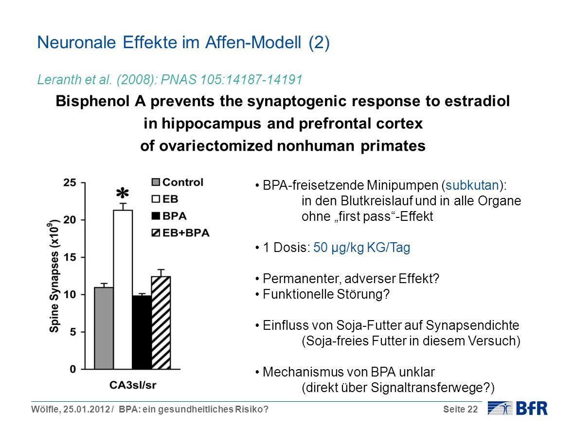 Neuronale Effekte im Affen-Modell (2)